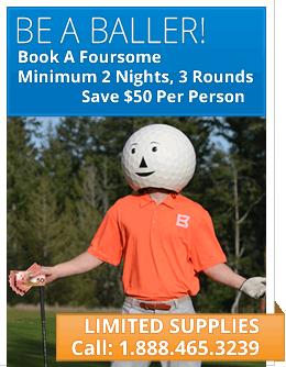 Be A Baller - Book a Foursome - Save $50 pp