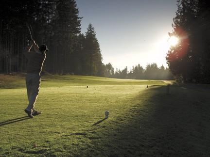 Pheasant Glen Morning golfer