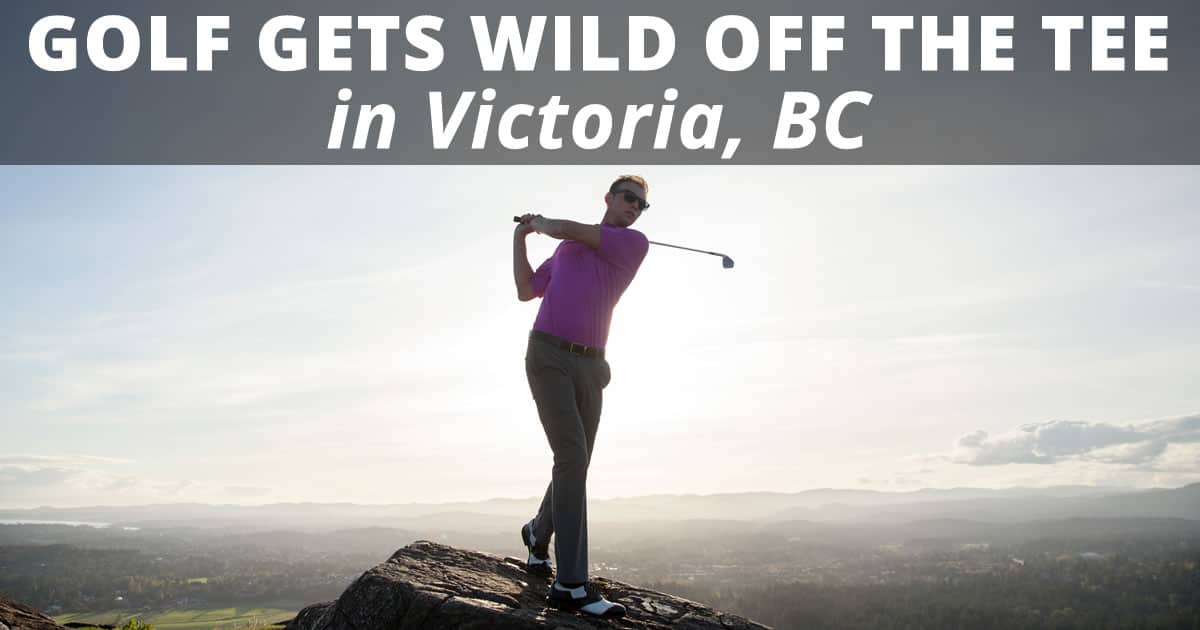Golf in Victoria gets wild off the tee